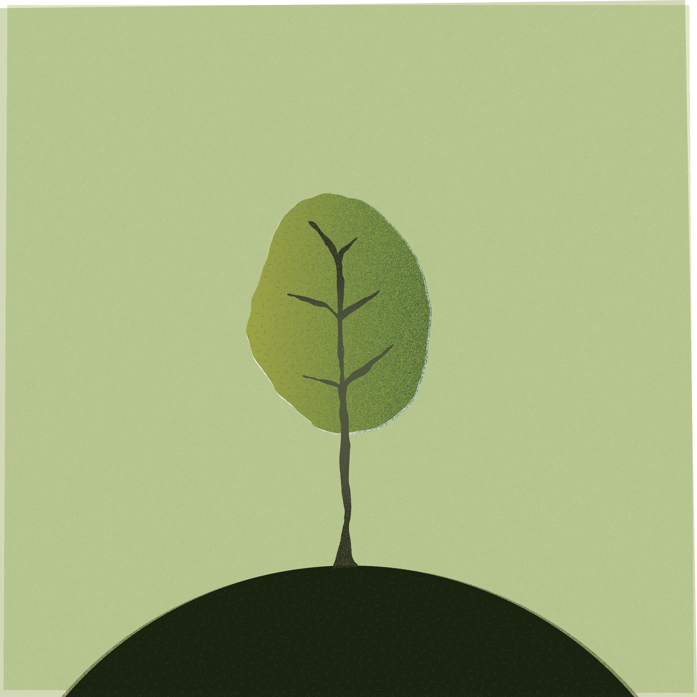 20-tree-01