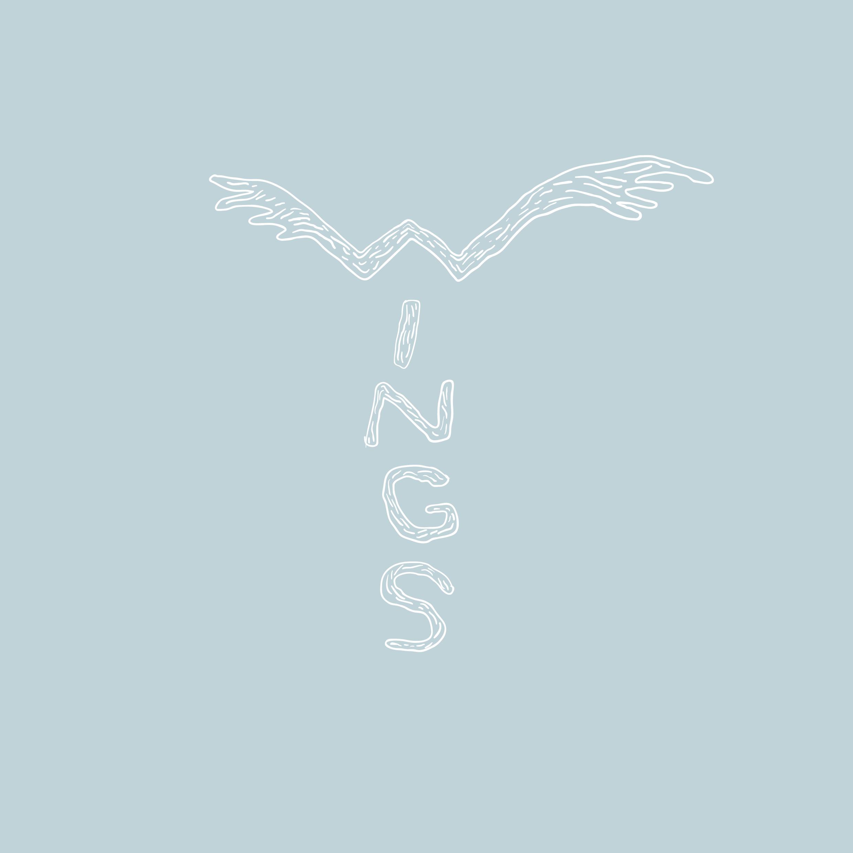 4-wings