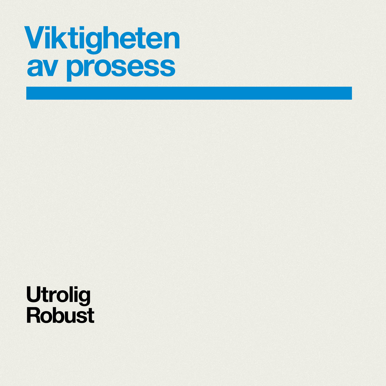 29-prosess-01